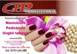 Cursuri Manichiura Alba Iulia Transilvania Cursuri De Formare